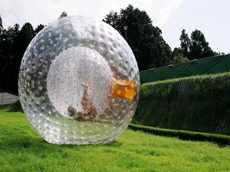 Bella Állatpark, Siófok, Programok, Buborékfoci